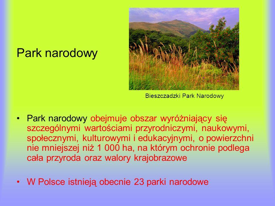Park narodowy Bieszczadzki Park Narodowy Park narodowy obejmuje obszar wyróżniający się szczególnymi wartościami przyrodniczymi, naukowymi, społecznym