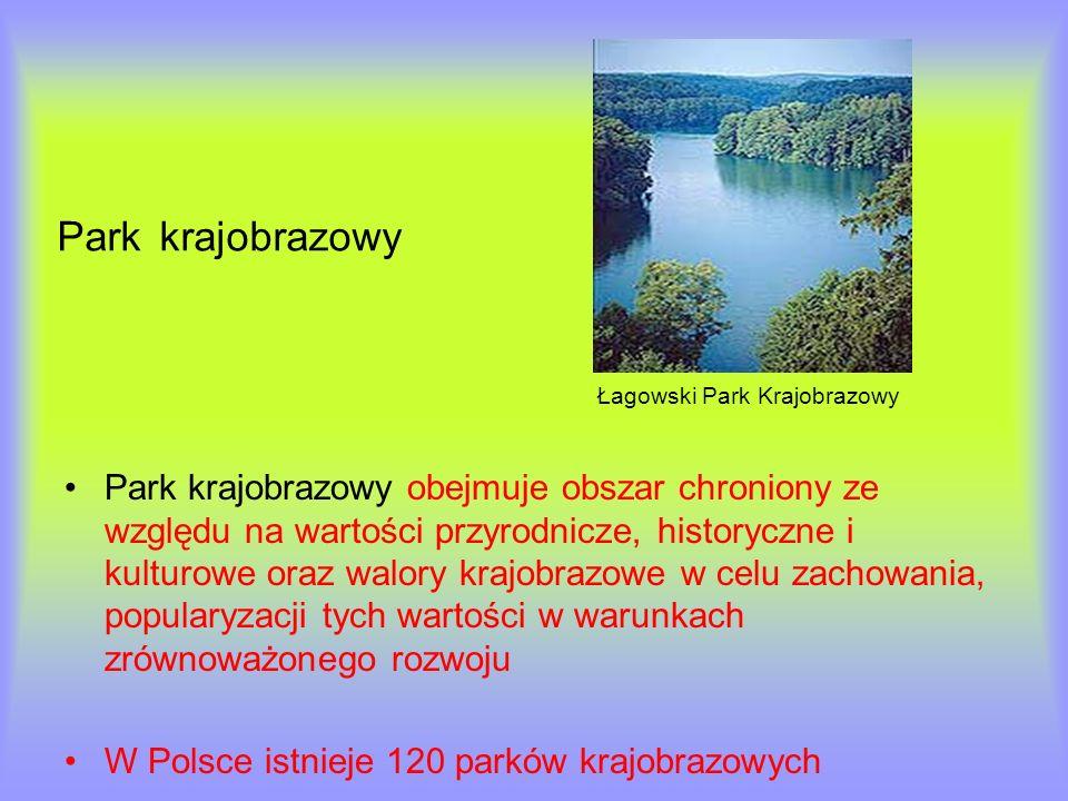 Park krajobrazowy Łagowski Park Krajobrazowy Park krajobrazowy obejmuje obszar chroniony ze względu na wartości przyrodnicze, historyczne i kulturowe