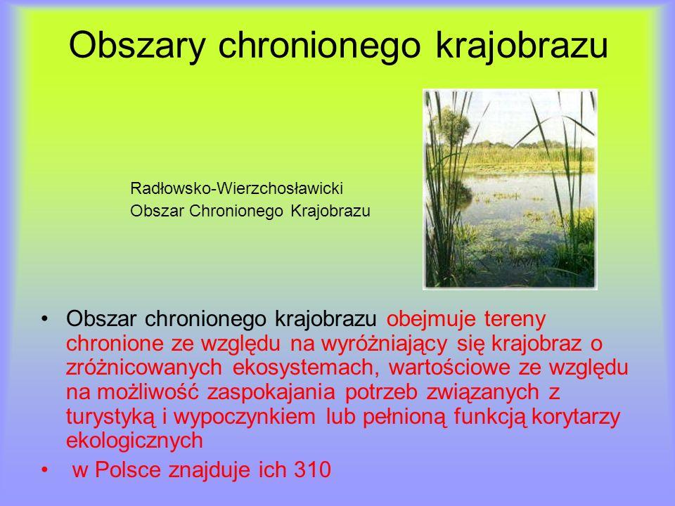 Obszary chronionego krajobrazu Radłowsko-Wierzchosławicki Obszar Chronionego Krajobrazu Obszar chronionego krajobrazu obejmuje tereny chronione ze wzg