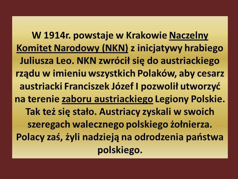 W 1914r. powstaje w Krakowie Naczelny Komitet Narodowy (NKN) z inicjatywy hrabiego Juliusza Leo. NKN zwrócił się do austriackiego rządu w imieniu wszy