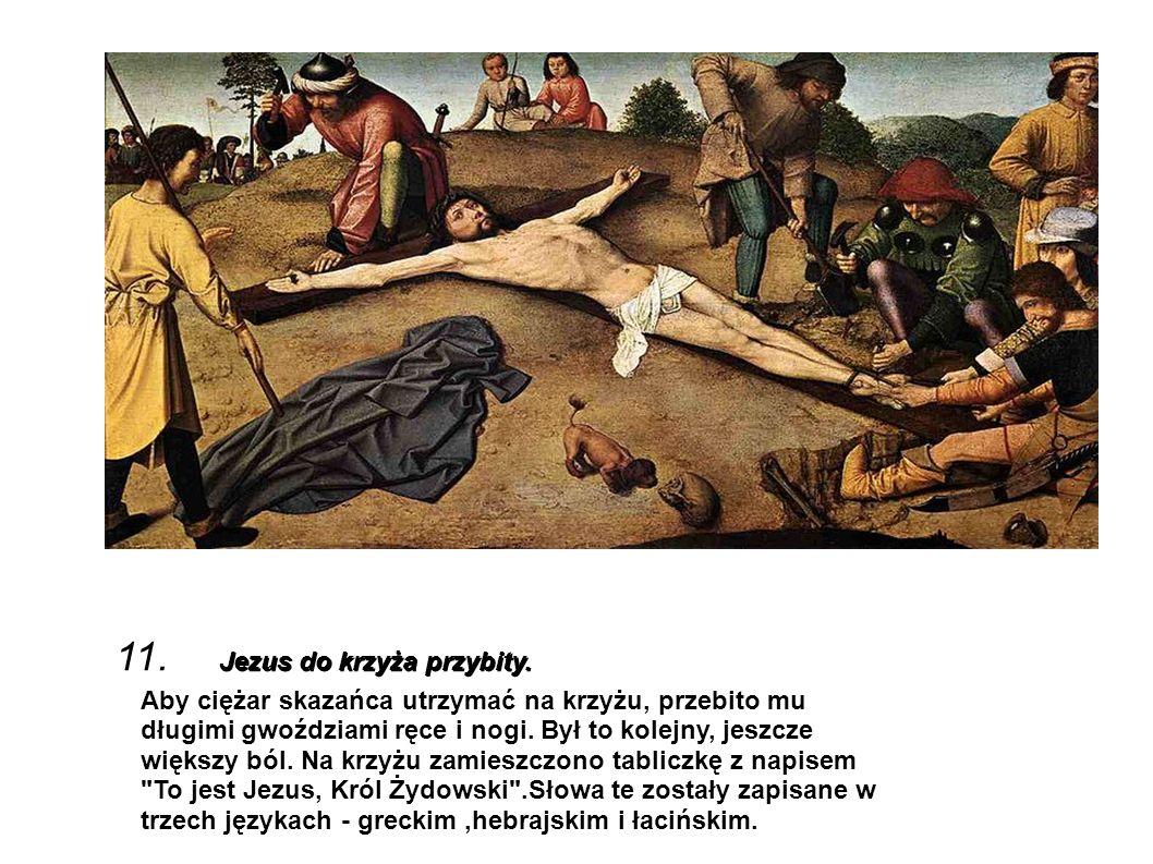 Jezus do krzyża przybity. 11. Jezus do krzyża przybity. Aby ciężar skazańca utrzymać na krzyżu, przebito mu długimi gwoździami ręce i nogi. Był to kol