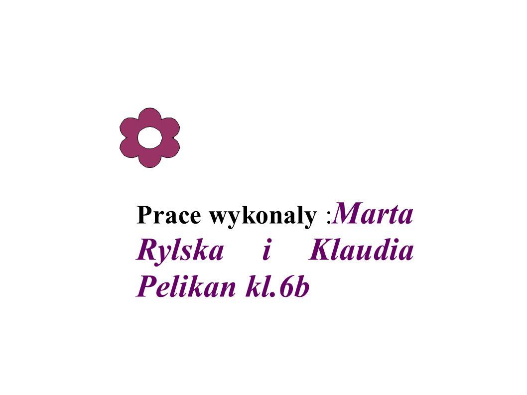 Prace wykonaly : Marta Rylska i Klaudia Pelikan kl.6b