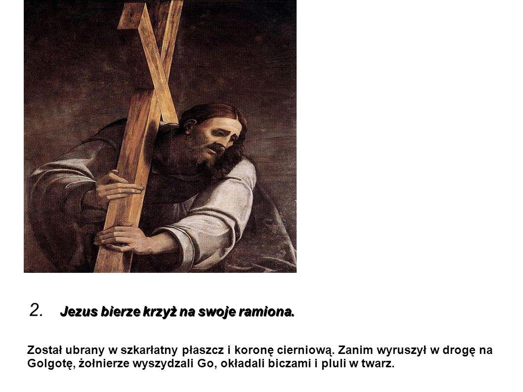 Jezus bierze krzyż na swoje ramiona. 2. Jezus bierze krzyż na swoje ramiona. Został ubrany w szkarłatny płaszcz i koronę cierniową. Zanim wyruszył w d