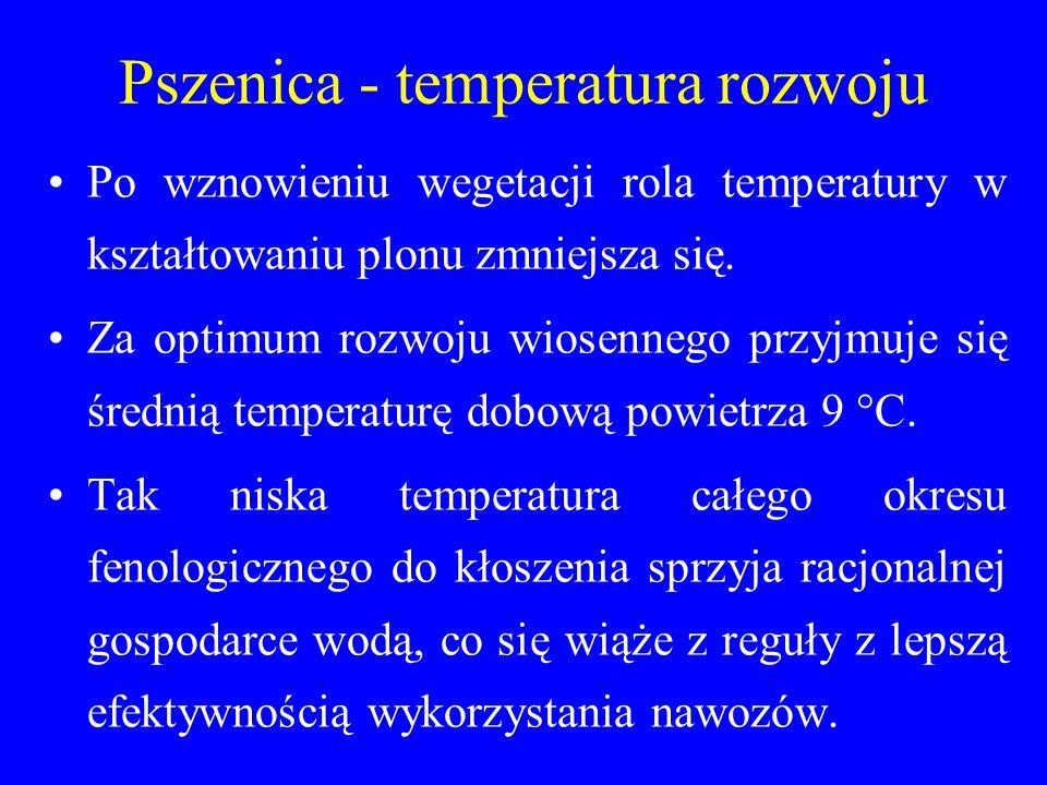 Pszenica - temperatura rozwoju Po wznowieniu wegetacji rola temperatury w kształtowaniu plonu zmniejsza się.