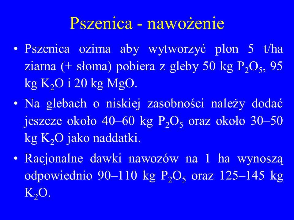 Pszenica - nawożenie Pszenica ozima aby wytworzyć plon 5 t/ha ziarna (+ słoma) pobiera z gleby 50 kg P 2 O 5, 95 kg K 2 O i 20 kg MgO.