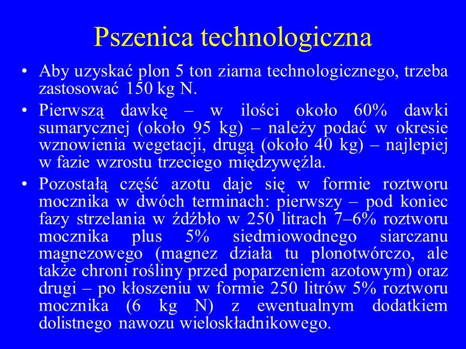 Pszenica technologiczna Aby uzyskać plon 5 ton ziarna technologicznego, trzeba zastosować 150 kg N.