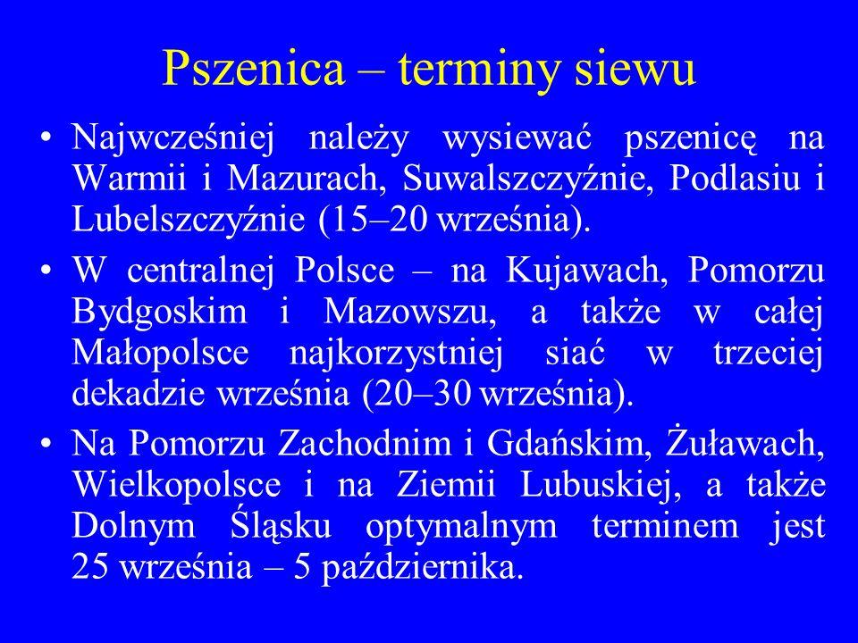 Pszenica – terminy siewu Najwcześniej należy wysiewać pszenicę na Warmii i Mazurach, Suwalszczyźnie, Podlasiu i Lubelszczyźnie (15–20 września).