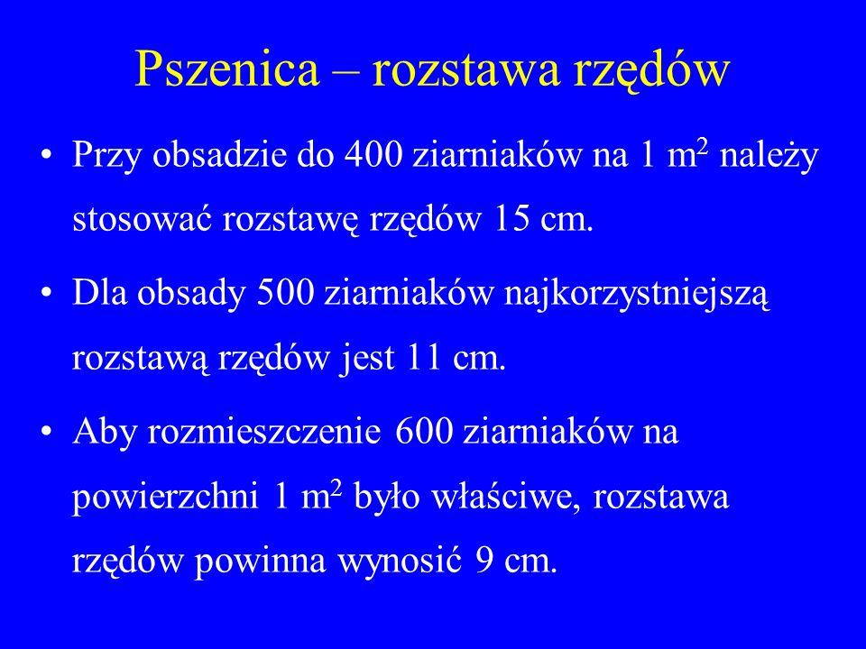 Pszenica – rozstawa rzędów Przy obsadzie do 400 ziarniaków na 1 m 2 należy stosować rozstawę rzędów 15 cm.