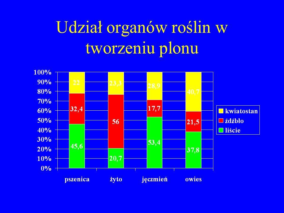 Udział organów roślin w tworzeniu plonu