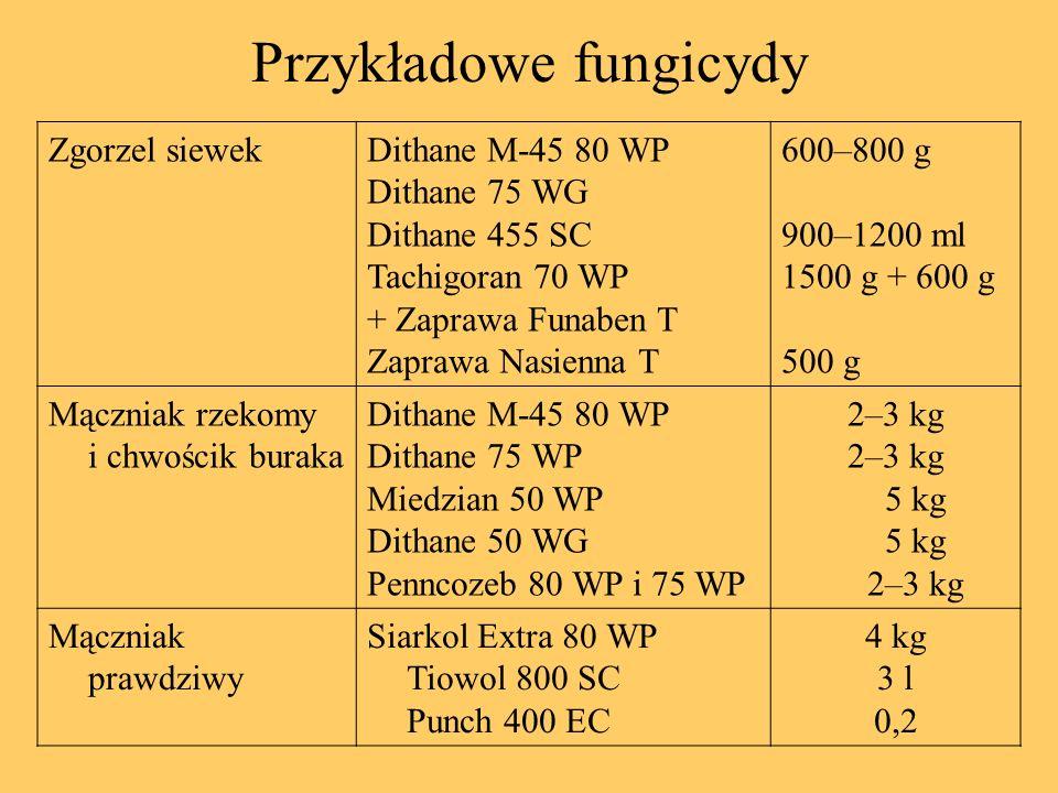 Przykładowe fungicydy Zgorzel siewekDithane M-45 80 WP Dithane 75 WG Dithane 455 SC Tachigoran 70 WP + Zaprawa Funaben T Zaprawa Nasienna T 600–800 g
