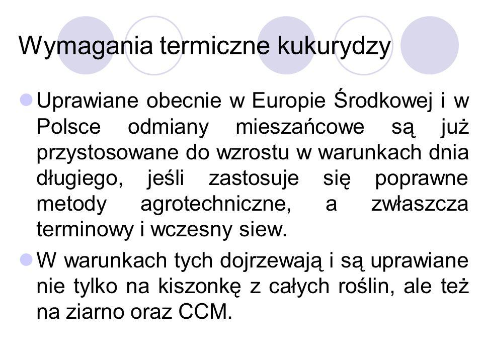 Wymagania termiczne kukurydzy Uprawiane obecnie w Europie Środkowej i w Polsce odmiany mieszańcowe są już przystosowane do wzrostu w warunkach dnia dł
