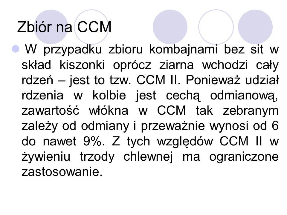 Zbiór na CCM W przypadku zbioru kombajnami bez sit w skład kiszonki oprócz ziarna wchodzi cały rdzeń – jest to tzw. CCM II. Ponieważ udział rdzenia w