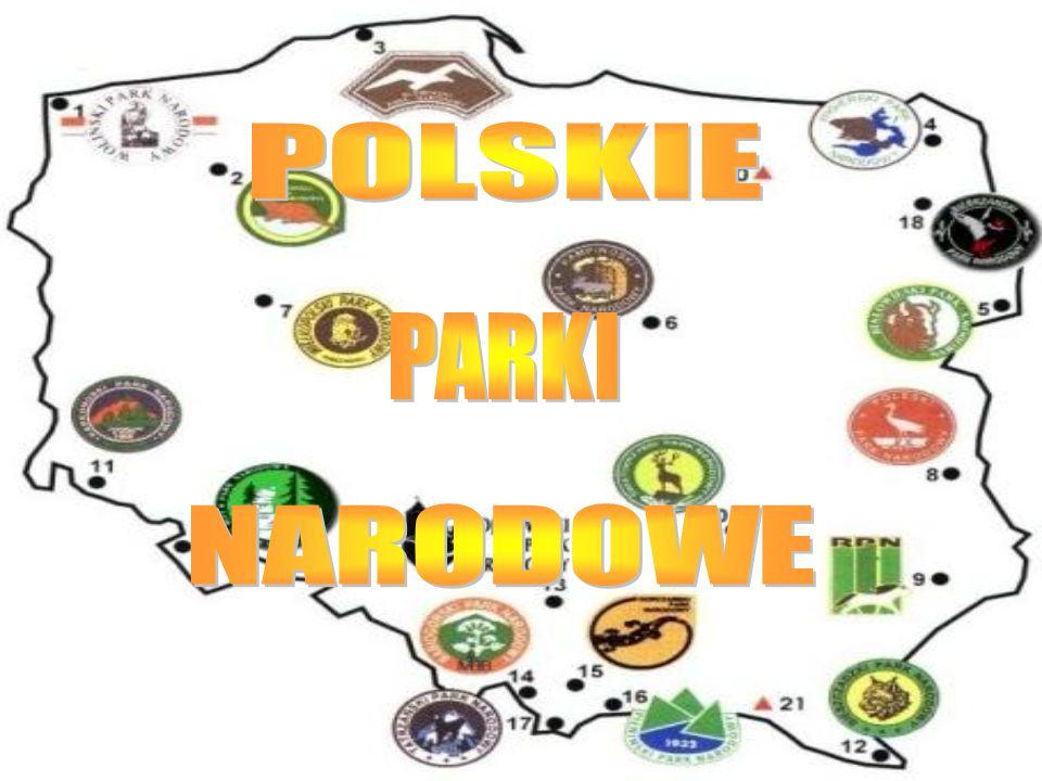 Woliński Park Narodowy położony jest u ujścia Odry w północno- zachodniej Polsce, w województwie zachodniopomorskim, w pobliżu granicy polsko - niemieckiej.