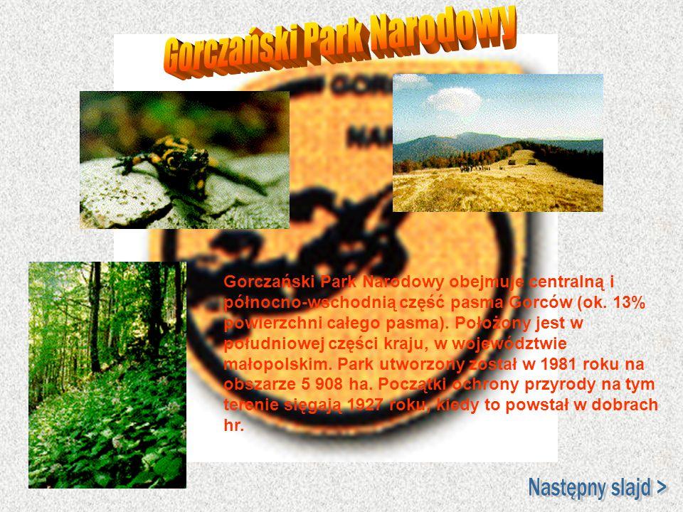 Gorczański Park Narodowy obejmuje centralną i północno-wschodnią część pasma Gorców (ok. 13% powierzchni całego pasma). Położony jest w południowej cz