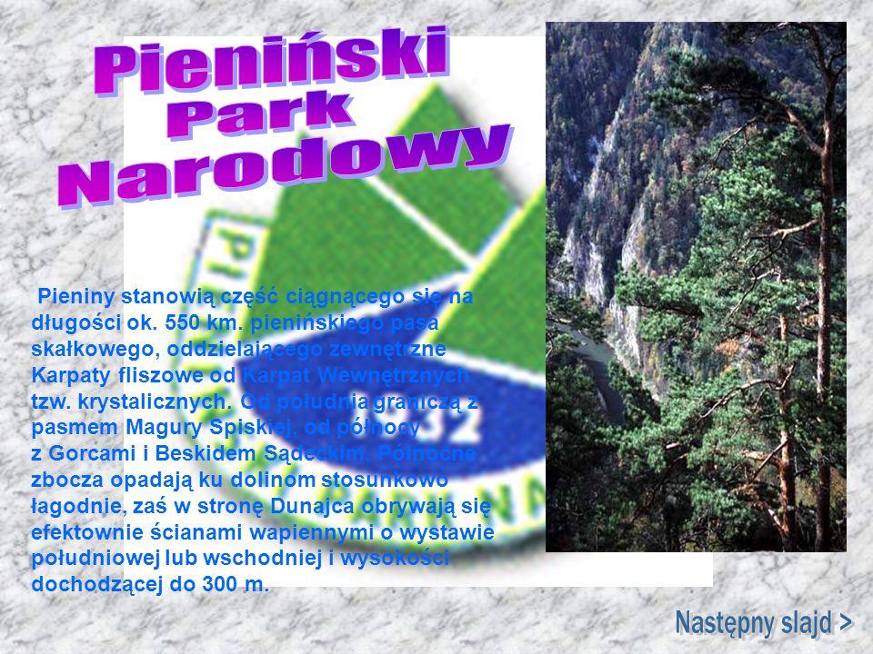 Pieniny stanowią część ciągnącego się na długości ok. 550 km. pienińskiego pasa skałkowego, oddzielającego zewnętrzne Karpaty fliszowe od Karpat Wewnę