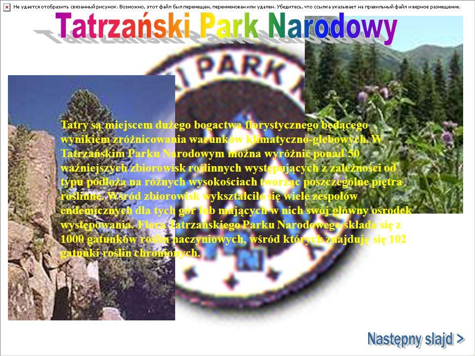 Tatry są miejscem dużego bogactwa florystycznego będącego wynikiem zróżnicowania warunków klimatyczno-glebowych. W Tatrzańskim Parku Narodowym można w