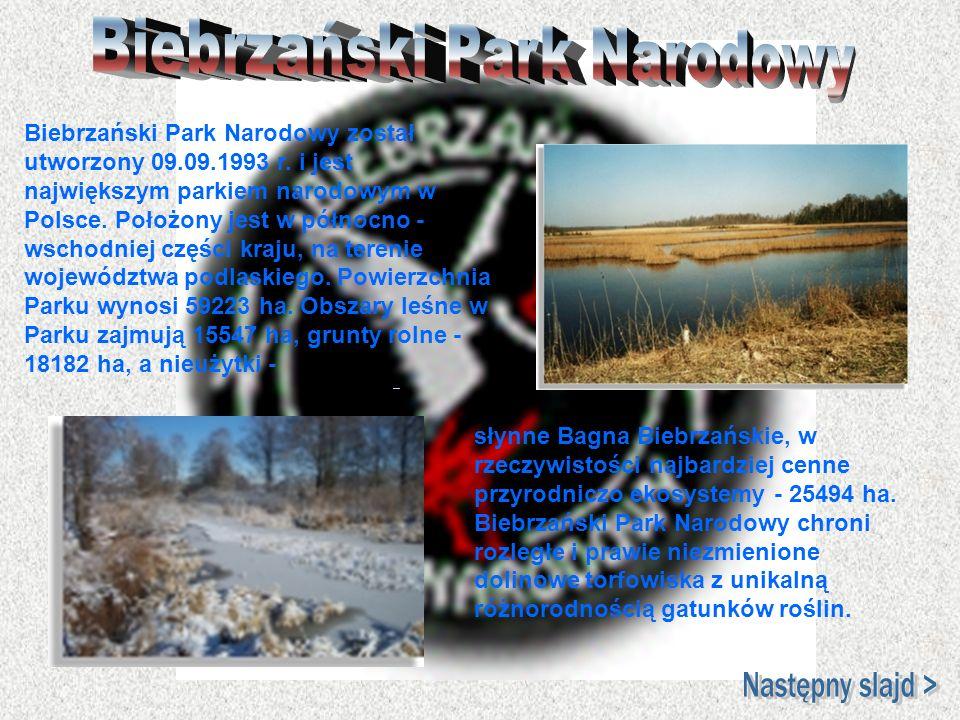 Biebrzański Park Narodowy został utworzony 09.09.1993 r. i jest największym parkiem narodowym w Polsce. Położony jest w północno - wschodniej części k