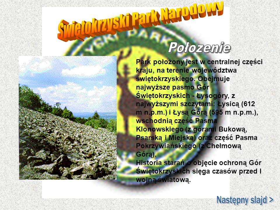 Park położony jest w centralnej części kraju, na terenie województwa świętokrzyskiego. Obejmuje najwyższe pasmo Gór Świętokrzyskich - Łysogóry, z najw