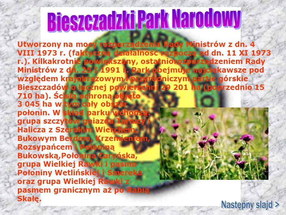 Ojcowski Park Narodowy leży w województwie małopolskim, w południowej części Jury Krakowsko-Częstochowskiej (50°12 N, 19°46 E) i obejmuje środkową część Doliny Prądnika o długości 12 km, część Doliny Sąspowskiej oraz kilka mniejszych dolinek i wąwozów.