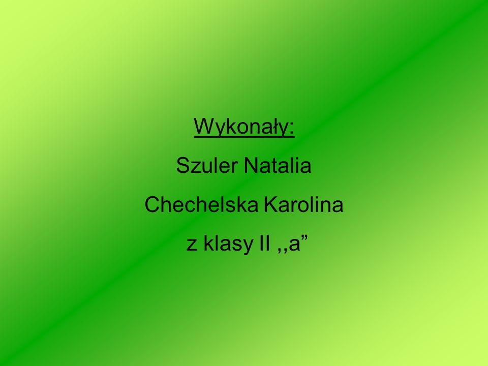 Wykonały: Szuler Natalia Chechelska Karolina z klasy II,,a