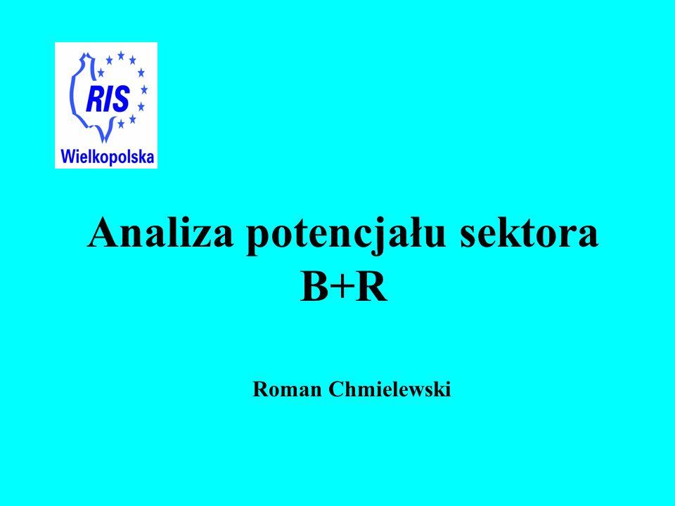 Roman Chmielewski Analiza potencjału sektora B+R