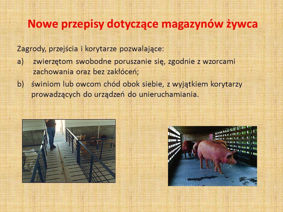 Nowe przepisy dotyczące magazynów żywca Zagrody, przejścia i korytarze pozwalające: a)zwierzętom swobodne poruszanie się, zgodnie z wzorcami zachowani