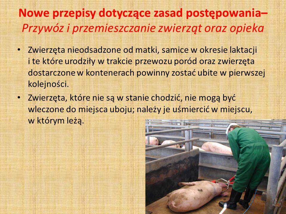 Nowe przepisy dotyczące zasad postępowania– Przywóz i przemieszczanie zwierząt oraz opieka Zwierzęta nieodsadzone od matki, samice w okresie laktacji