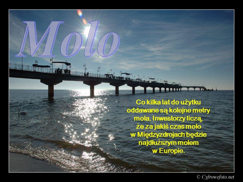 Co kilka lat do użytku oddawane są kolejne metry mola.