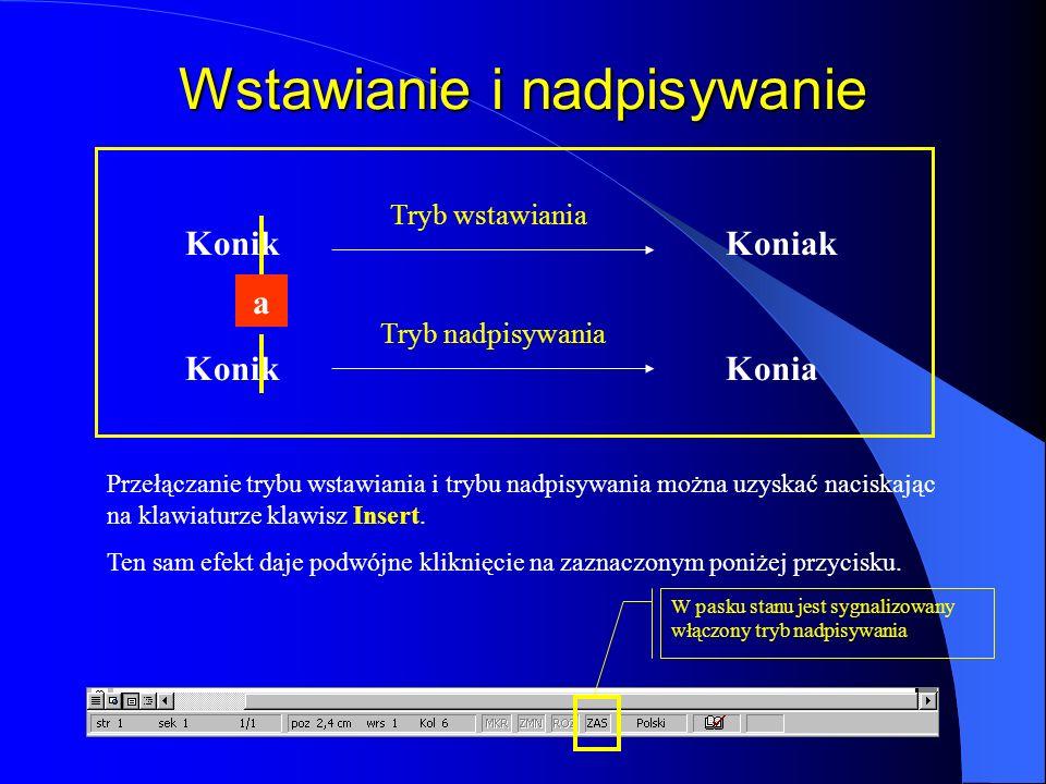 Paski przewijania Pasek poziomy ma taki sam wygląd niezależnie od sposobu wyświetlania dokumentu; służy do przeglądania dokumentu w poziomie Przewinię