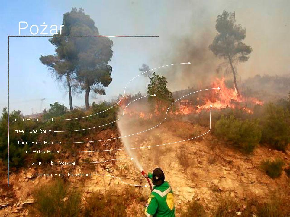 Pożar fire – das Feuer water – das Wasser smoke - der Rauch fireman - der Feuermann flame – die Flamme tree – das Baum