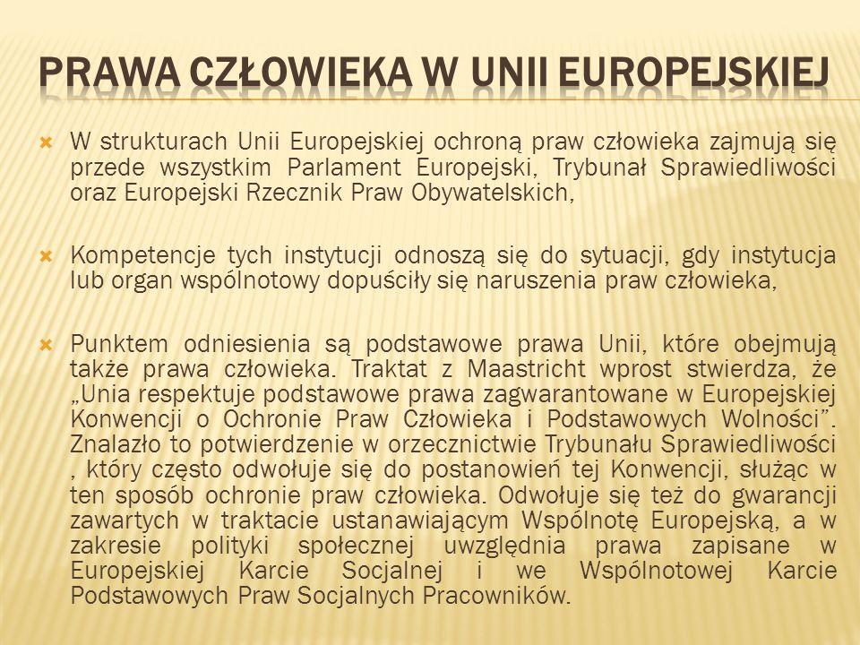 W strukturach Unii Europejskiej ochroną praw człowieka zajmują się przede wszystkim Parlament Europejski, Trybunał Sprawiedliwości oraz Europejski Rze