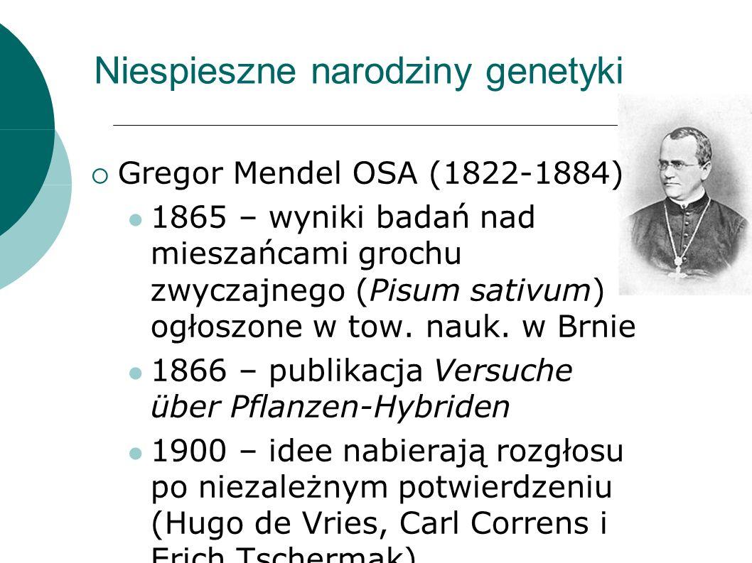 Niespieszne narodziny genetyki Gregor Mendel OSA (1822-1884) 1865 – wyniki badań nad mieszańcami grochu zwyczajnego (Pisum sativum) ogłoszone w tow.