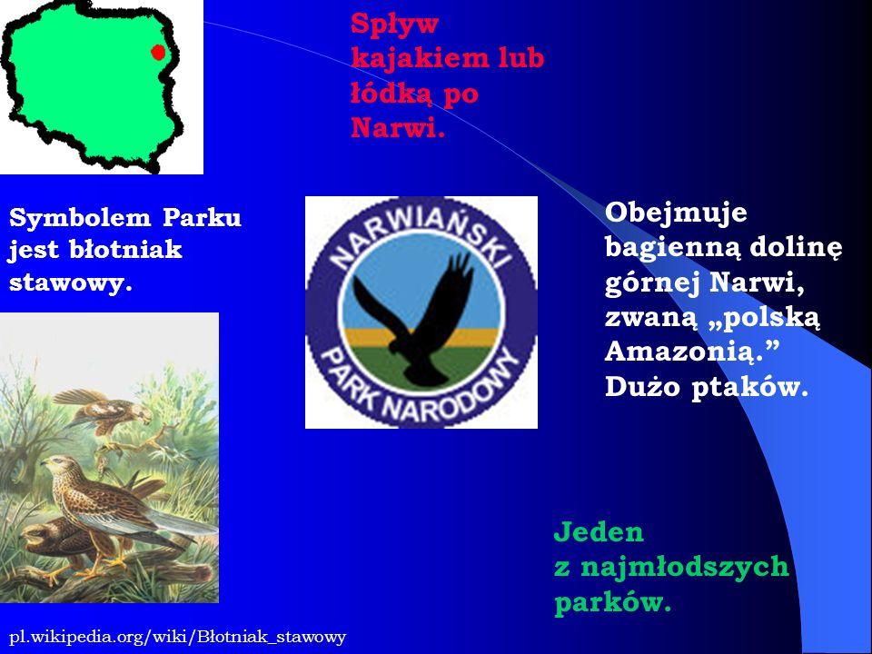 Symbolem Parku jest błotniak stawowy. Obejmuje bagienną dolinę górnej Narwi, zwaną polską Amazonią. Dużo ptaków. pl.wikipedia.org/wiki/Błotniak_stawow