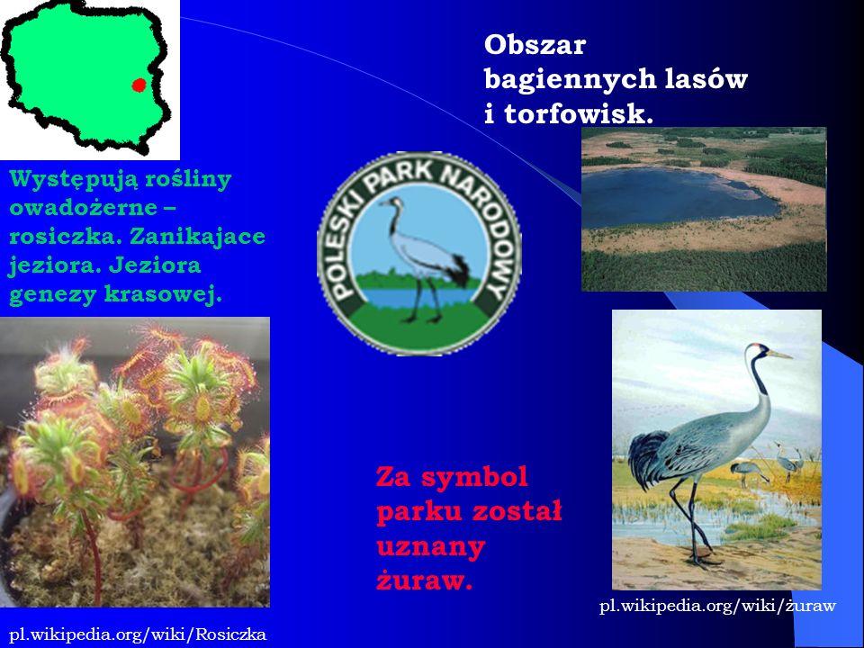 Obszar bagiennych lasów i torfowisk. Występują rośliny owadożerne – rosiczka. Zanikajace jeziora. Jeziora genezy krasowej. Za symbol parku został uzna