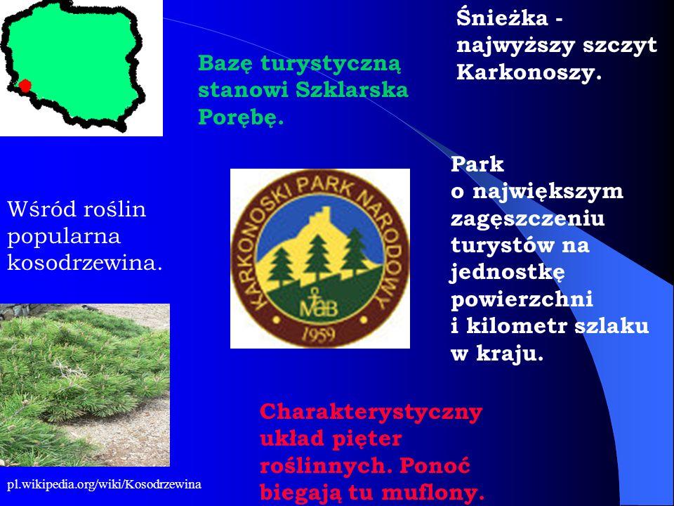 Park o największym zagęszczeniu turystów na jednostkę powierzchni i kilometr szlaku w kraju. Charakterystyczny układ pięter roślinnych. Ponoć biegają