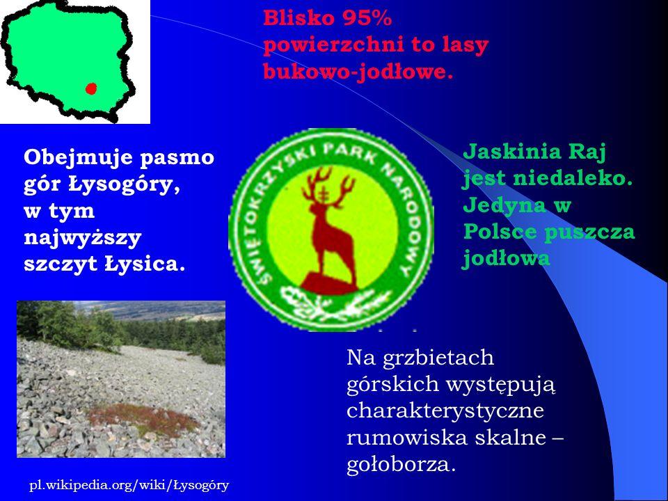 Blisko 95% powierzchni to lasy bukowo-jodłowe. Jaskinia Raj jest niedaleko. Jedyna w Polsce puszcza jodłowa Obejmuje pasmo gór Łysogóry, w tym najwyżs