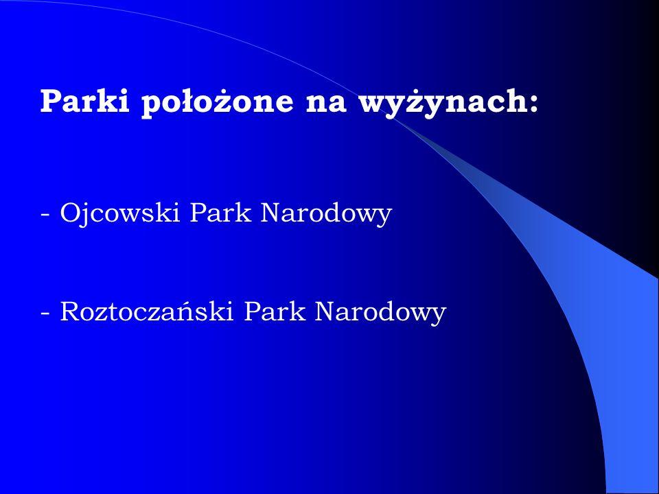 Parki położone na wyżynach: - Ojcowski Park Narodowy - Roztoczański Park Narodowy