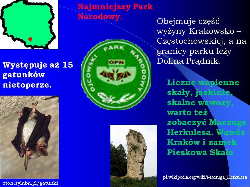 Najmniejszy Park Narodowy. Obejmuje część wyżyny Krakowsko – Częstochowskiej, a na granicy parku leży Dolina Prądnik. oton.sylaba.pl/gatunki Występuje