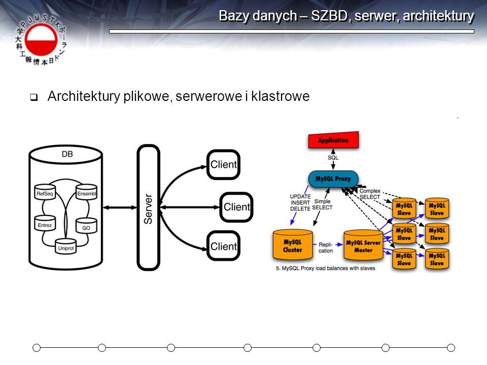 Bazy danych – SZBD, serwer, architektury Architektury plikowe, serwerowe i klastrowe