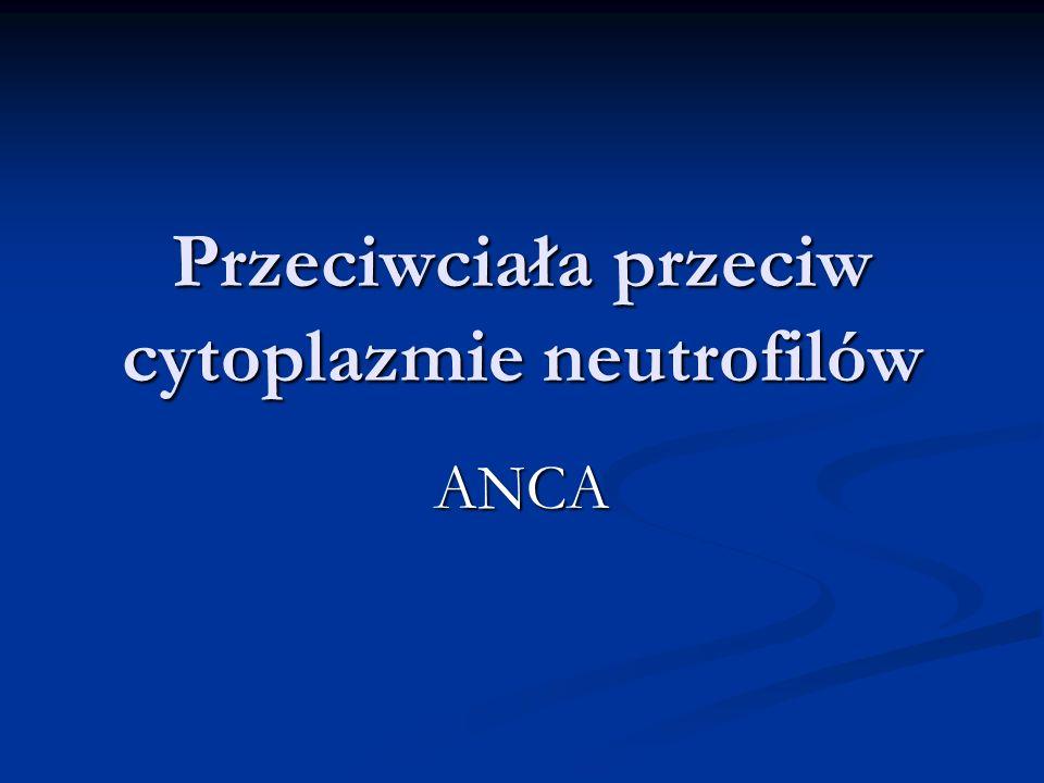 Przeciwciała przeciw cytoplazmie neutrofilów ANCA