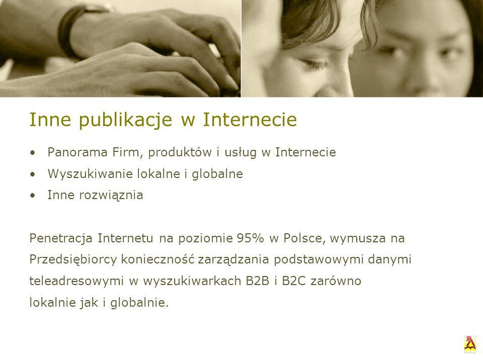Inne publikacje w Internecie Panorama Firm, produktów i usług w Internecie Wyszukiwanie lokalne i globalne Inne rozwiąznia Penetracja Internetu na poz