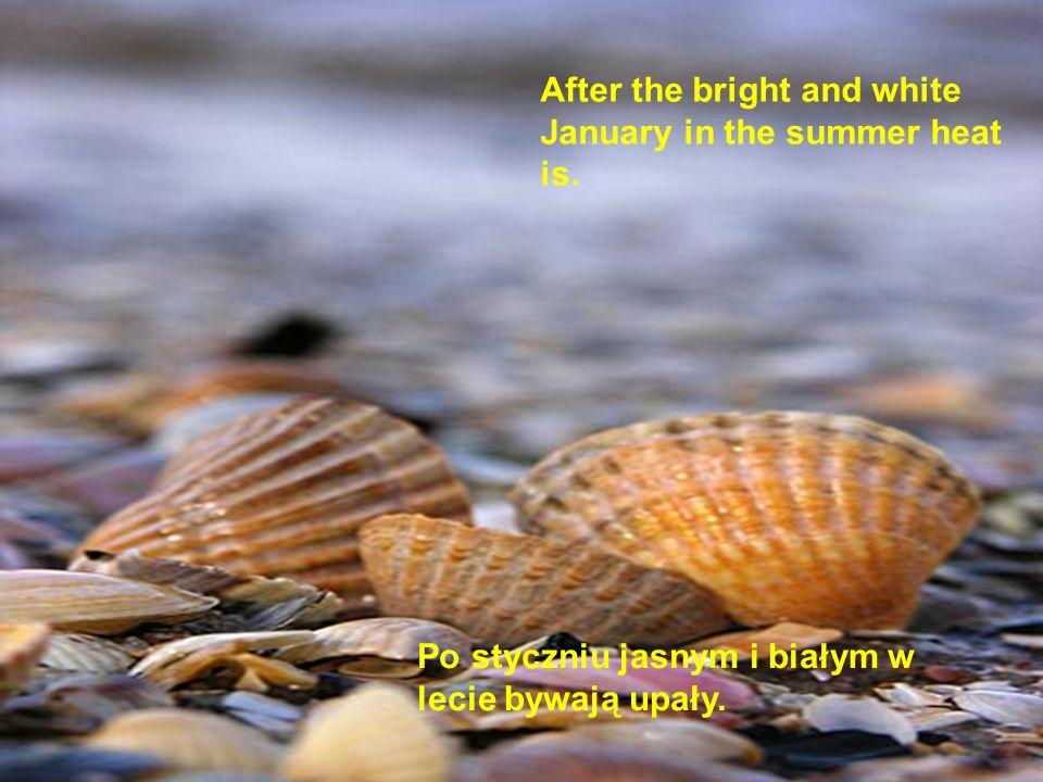 Po styczniu jasnym i białym w lecie bywają upały. After the bright and white January in the summer heat is.