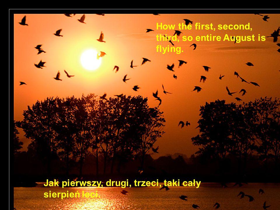 Jak pierwszy, drugi, trzeci, taki cały sierpień leci. How the first, second, third, so entire August is flying.