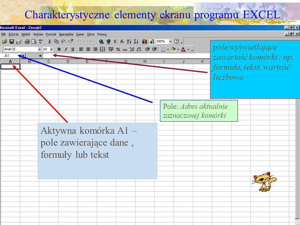 Własne ustawienia stałe (początkowe) Z menu narzędzia wybieramy Opcje