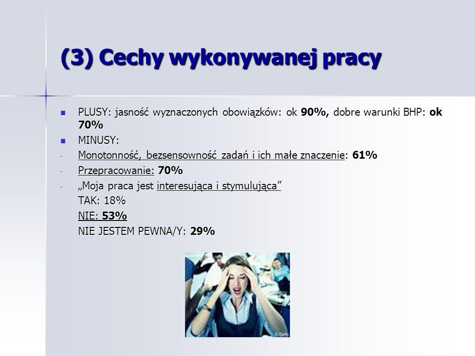 Cechy wykonywanej pracy – uwagi Cechy wykonywanej pracy – uwagi Problem motywacji Problem motywacji Potrzeba osiągnięć i sukcesów Potrzeba osiągnięć i sukcesów Notoryczna pracowitość i wszechstronność Polaków - cytat z wypowiedzi Notoryczna pracowitość i wszechstronność Polaków - cytat z wypowiedzi Problem z nami, polskim pracownikami polega na tym, że często od razu zdradzamy się z naszymi wszystkimi umiejętnościami i jesteśmy zbyt skorzy by się wykazać.