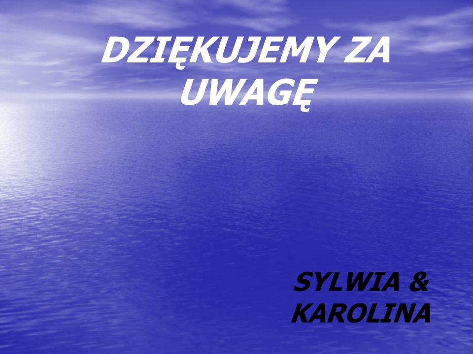 DZIĘKUJEMY ZA UWAGĘ SYLWIA & KAROLINA