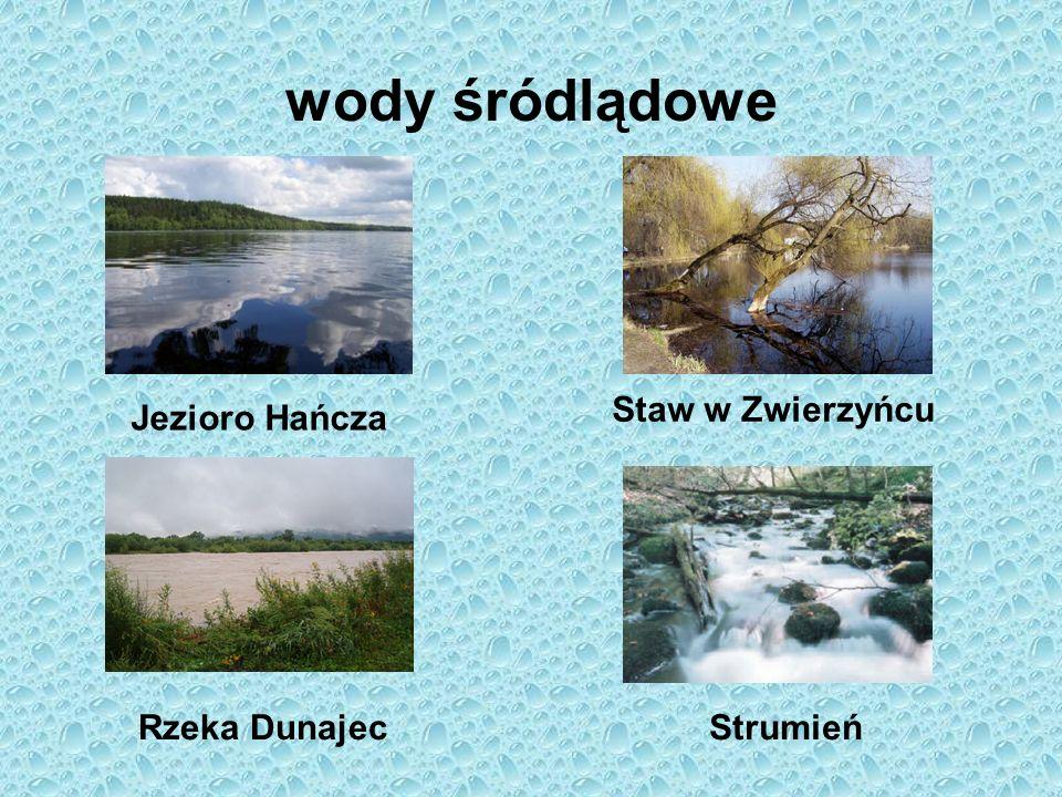 wody śródlądowe Jezioro Hańcza Staw w Zwierzyńcu Rzeka DunajecStrumień