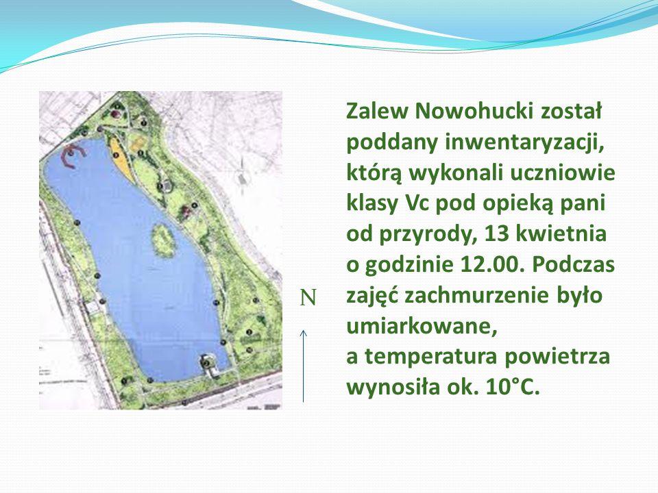 N Zalew Nowohucki został poddany inwentaryzacji, którą wykonali uczniowie klasy Vc pod opieką pani od przyrody, 13 kwietnia o godzinie 12.00. Podczas