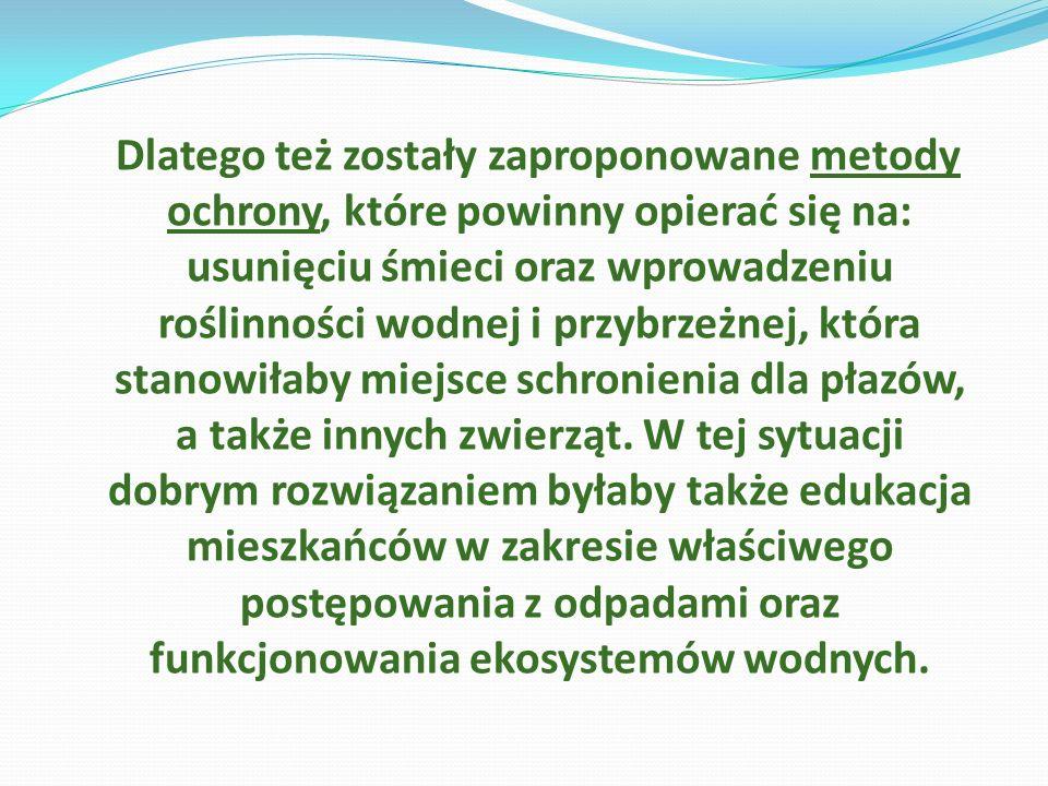 Dlatego też zostały zaproponowane metody ochrony, które powinny opierać się na: usunięciu śmieci oraz wprowadzeniu roślinności wodnej i przybrzeżnej,