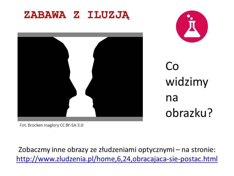 ZABAWA Z ILUZJĄ Zobaczmy inne obrazy ze złudzeniami optycznymi – na stronie: http://www.zludzenia.pl/home,6,24,obracajaca-sie-postac.html Co widzimy n